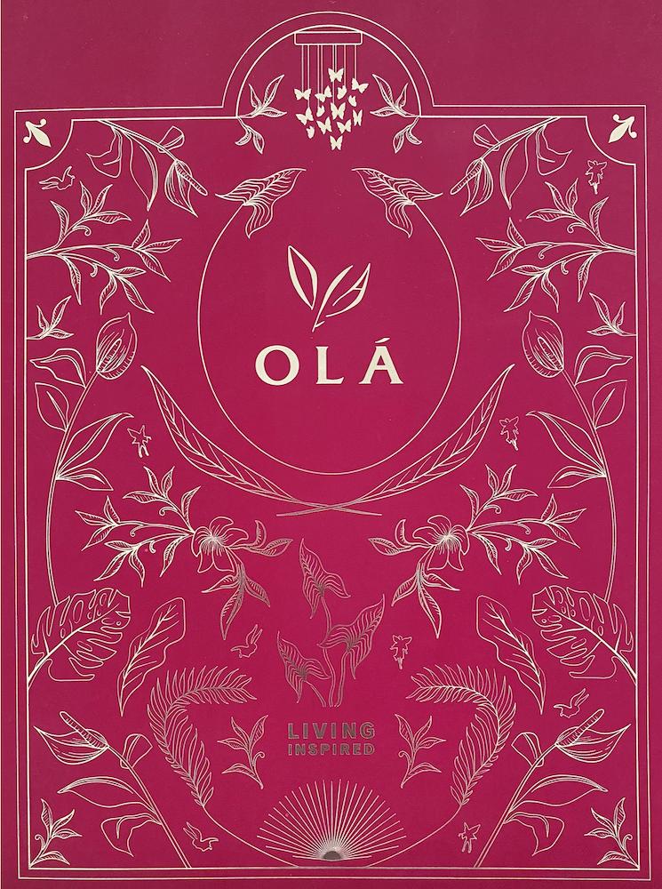 ola-ec-e-brochure